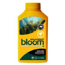 Bloom Advanced Floriculture Seaweed